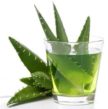 usos-gastronintestinales-aplicacion-interna-aloe-vera